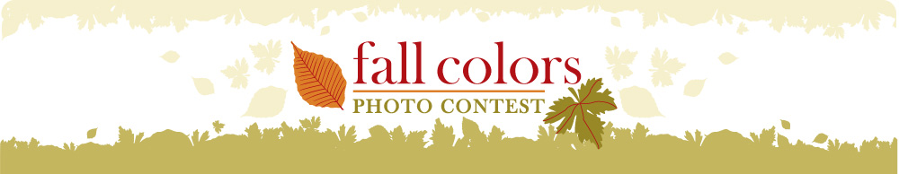 Fall Photos Contest